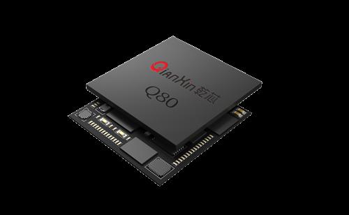 Wuhan Homsh Tech. Tapeout Qianxin Iris Recognition ASIC Chip Q80
